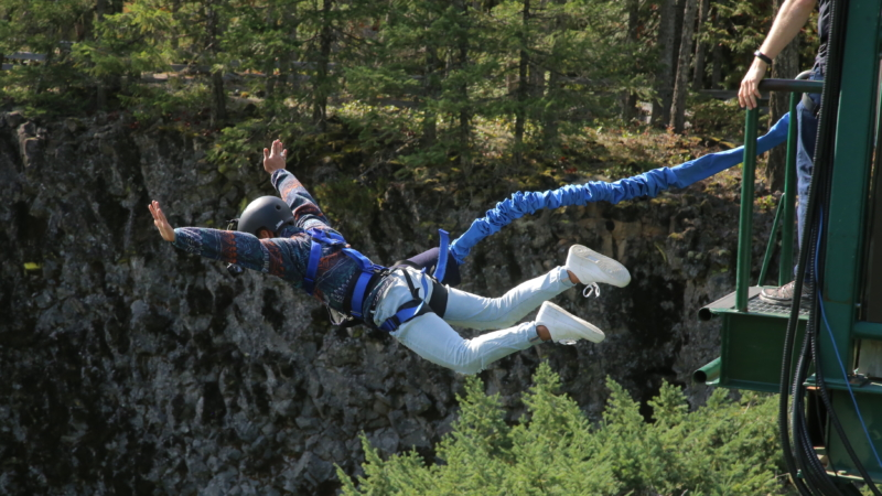 Bungee Jumping's Thumbnail